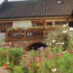 """Gästehaus, Appartements """"Chalet Raabe"""" in Sankt Martin in der Pfalz"""