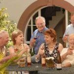 Weinberge des Weinguts RAABE in Sankt Martin