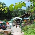 Waldgaststätte Ausflugslokal Rietania Hütte bei Weyher in der Pfalz