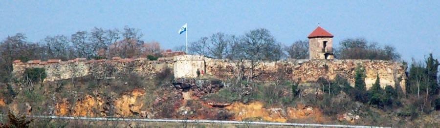 Burg Battenberg in der Pfalz von Norden