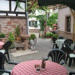 """""""Weingut und Straußenwirtschaft Poth"""" in Eschbach in der Pfalz"""