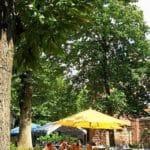 """Biergarten der Waldgaststätte, Restaurant """"Friedensdenkmal"""" bei Edenkoben"""