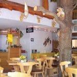 """Luftiger, moderner Gastraum in der """"Paddelweiherhütte"""" in Hauenstein"""