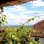 """Hotel, Pension """"Weinberg"""" & Landhaus """"Nizza"""" in Gleisweiler in der Pfalz"""