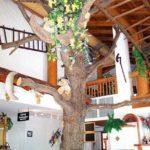 """Der Gastraum in der """"Paddelweiher Hütte"""" in Hauenstein"""