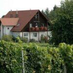 """Weingut, Weinstube, Weingalerie, Gästehaus """"Junker"""" in Impflingen in der Pfalz"""