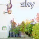 Zum Dokder in Edenkoben in der Pfalz - Urgemütliche Stammtischkneipe im Bistrostil