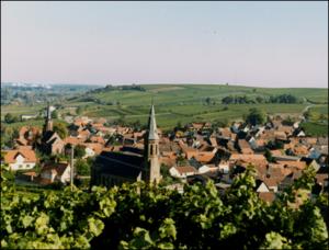Blick auf den Weinort Birkweiler