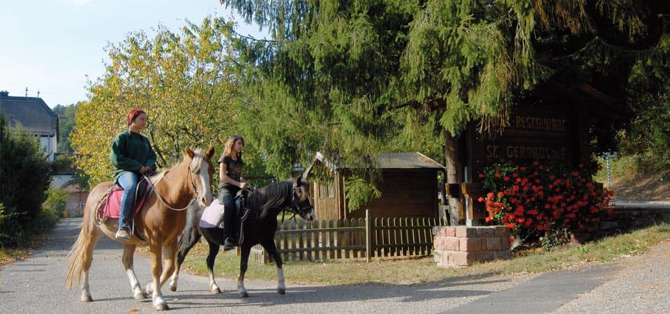 Ausritt am St. Germanshof bei Bobenthal in der Pfalz