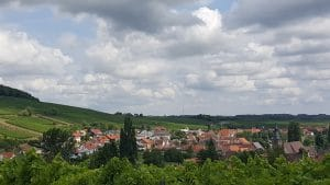 Blick auf Pleisweiler