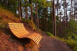 """Waldsofa"" in Busenberg in der Pfalz"