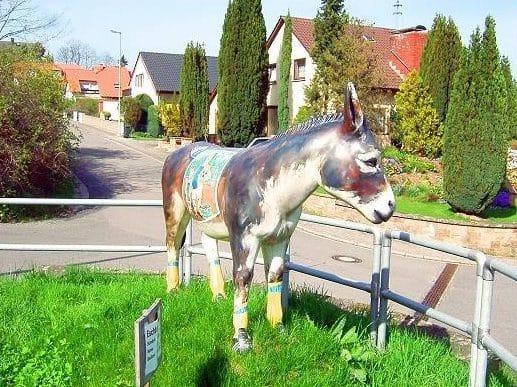 Ebenholz größten Esel