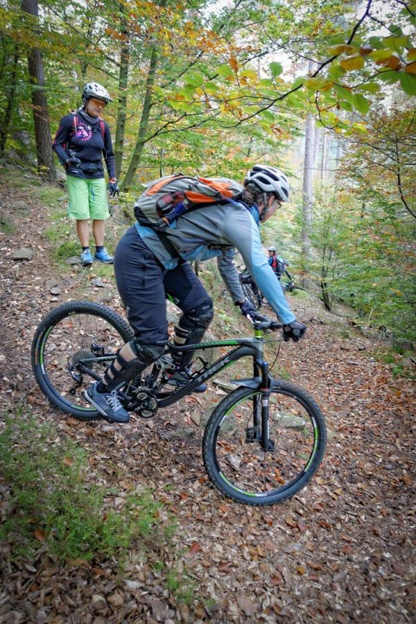 Mountainbikpark Pfälzerwald, 900 km perfekt ausgeschilderte Strecken