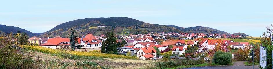 Panorama Sankt Martin in der Pfalz