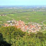 Eschbach in der Pfalz