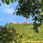 Die Madenburg über Eschbach in der Pfalz