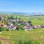Panoramablick von der Wachtenburg aus auf Wachenheim