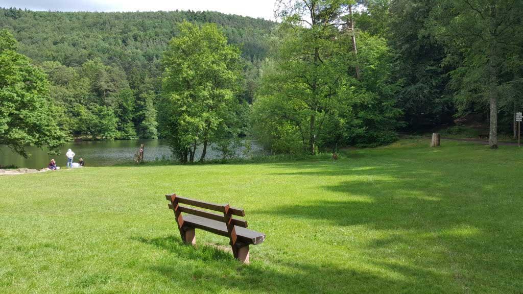 Ruhebank am Seehofweiher in Erlenbach bei Dahn