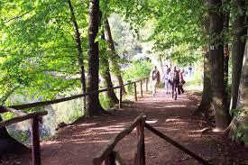 Pfrimmtal Wanderweg