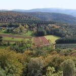Der Blick von Burgruine Lindelbrunn bei Vorderweidenthal in der Pfalz