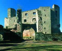 """Burg """"Gräfenstein"""" bei Merzalben in der Südwestpfalz"""