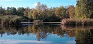 Das Naherholungs- und Naturschutzgebiet Erdekaut