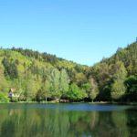 Helmbachweiher bei Elmstein