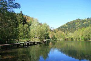 Helmbachweiher mit Freizeitanlage bei Elmstein in der Pfalz