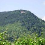 Die Rietburg über Rhodt in der Pfalz