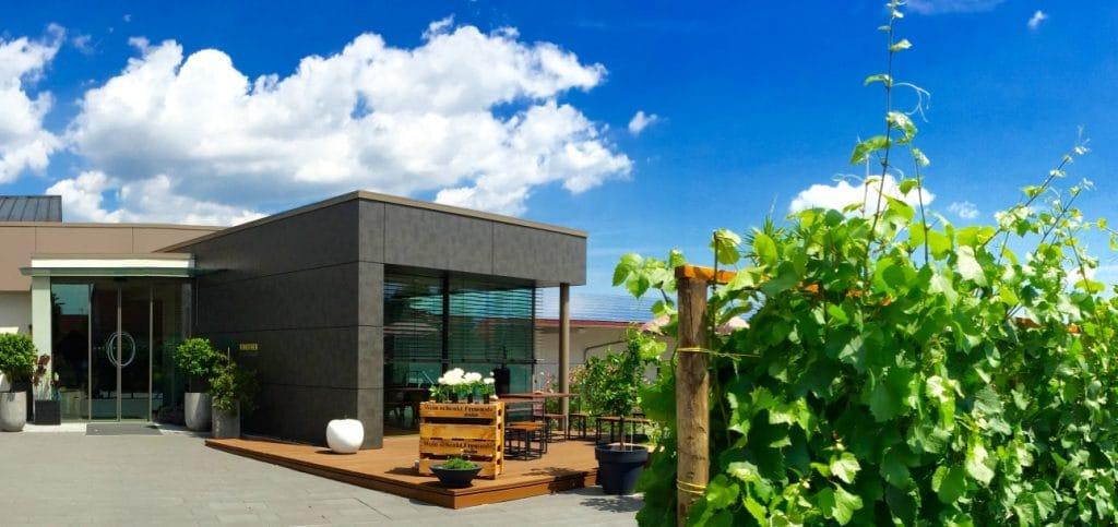 Weinstuben Vinotheken Winzerstuben Www Pfalz Info Com