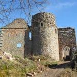 Burg Neuscharfeneck in der Pfalz