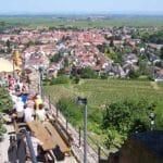 Burgschänke Wachtenburg über Wachenheim in der Pfalz