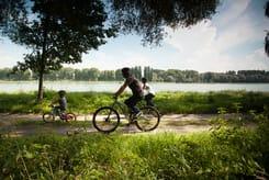 Fahrrad fahren in der Pfalz