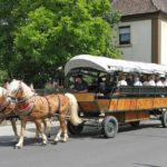 Kutsch- und Planwagenfahrten in der Pfalz