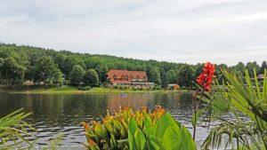 """Der Mühlweiher, auch """"Saarbacherhammer"""" mit Hotel, Landgasthof """"Zwickmühle"""" in Ludwigswinkel"""