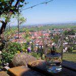 Pfälzer Schoppe auf der Wachtenburg über Wachenheim ander Weinstraße