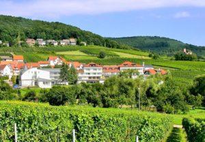 """Hotel***, Restaurant, Weinstube """"Südpfalz-Terrassen"""" in Gleiszellen-Gleishorbach in der Pfalz"""