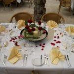 Hochzeit feiern im Reptilium, etwas Außergewöhnliches