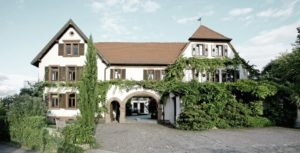 Weingut Scholler in Birkweiler