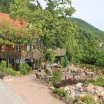 """Landhotel """"Apartment-Hotel Kastanienhof"""" in Dannenfels in der Pfalz"""