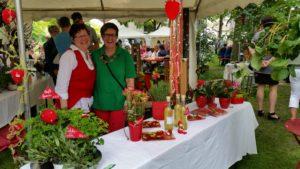 Erdbeermarkt in Herxheim bei Landau