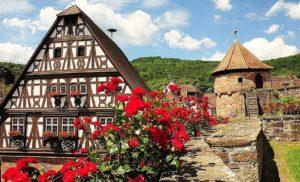 """Rosenwochen in Dörrenbach in der Pfalz - Gästewanderwoche """"Wald - Reben - Rosen"""""""
