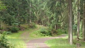 Wanderwege zur Hellerhütte im Kaltenbrunnertal