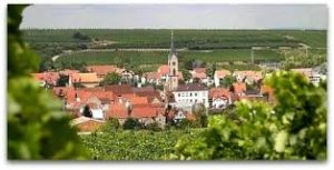 Der Weinbauort Kindenheim im Leiningerland
