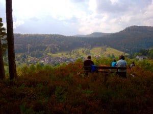 Ausblick in die Weinberge der Pfalz