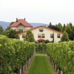 "Weingut ""Villa Hochdörffer"" in Landau"