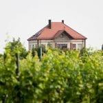 Weingut, Gästehaus
