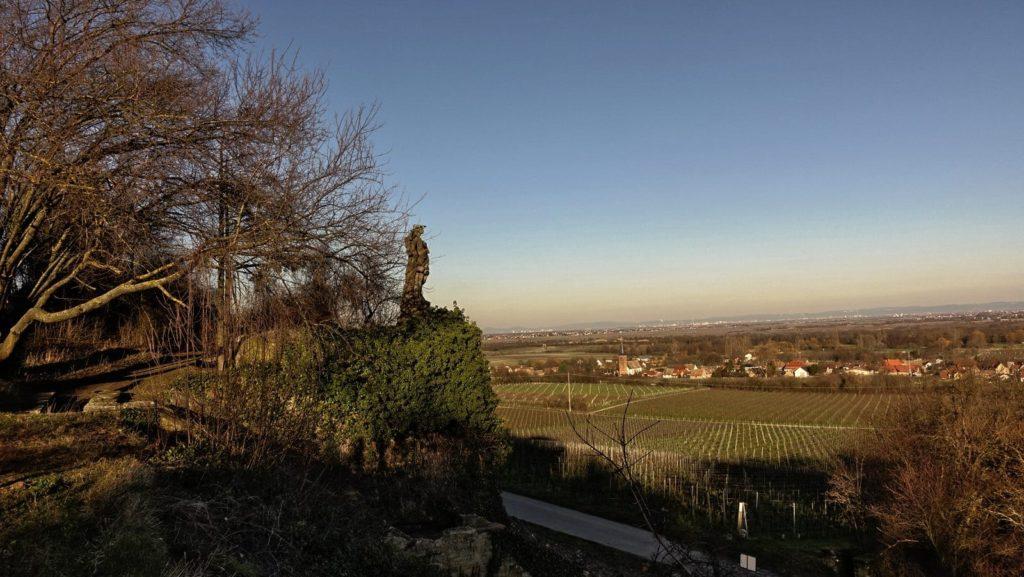 Weinmadonna mit Blick auf Forst