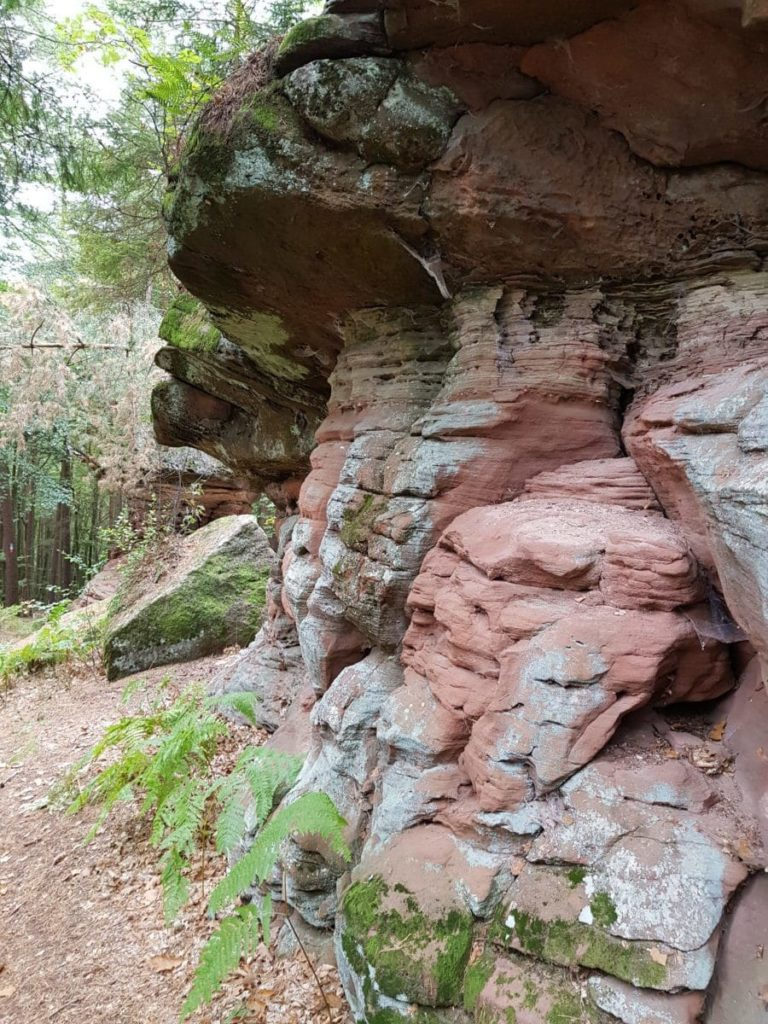 Unterwegs auf dem Dahner Felsenpfad