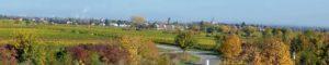 Friedelsheim bei Bad Dürkheim in der Pfalz